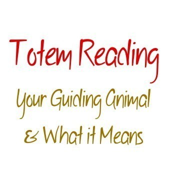 Totem Animal Reading, Which Animal Is Influencing Your Life Right Now?  Custom Reading & Amulet