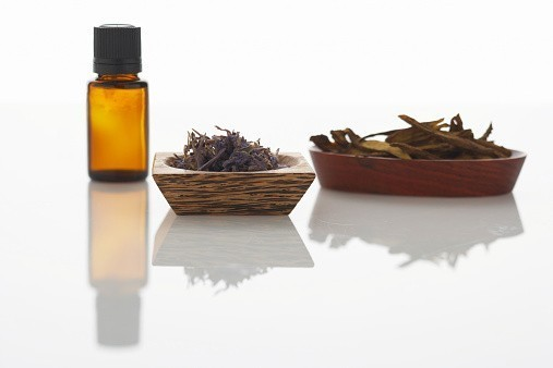 Aromatherapy Oil For Animal Instincts