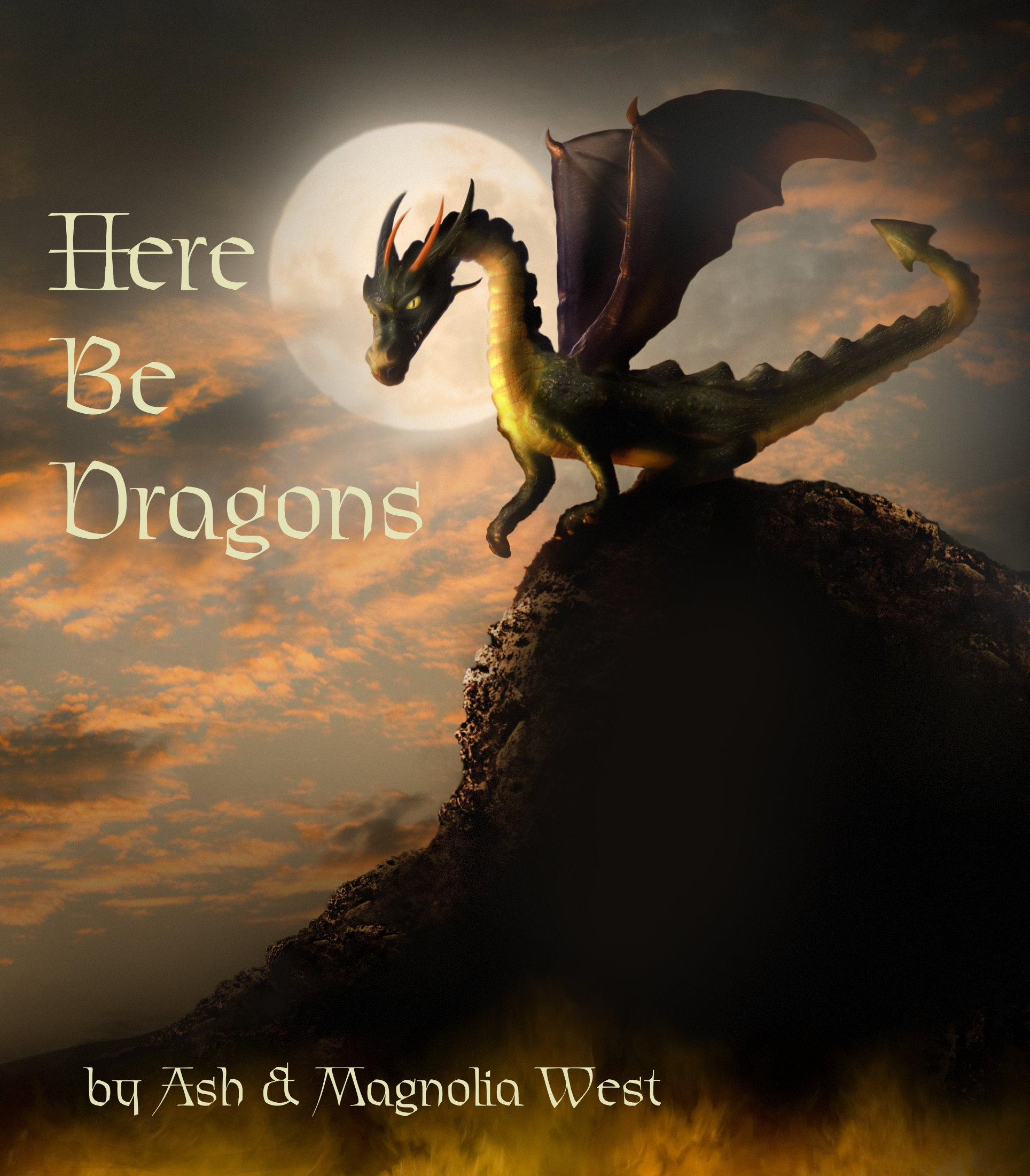 Here Be Dragons - A Book Written By Ash & Magnolia Reviewing 75 Races Of Dragon - Download Copy Only