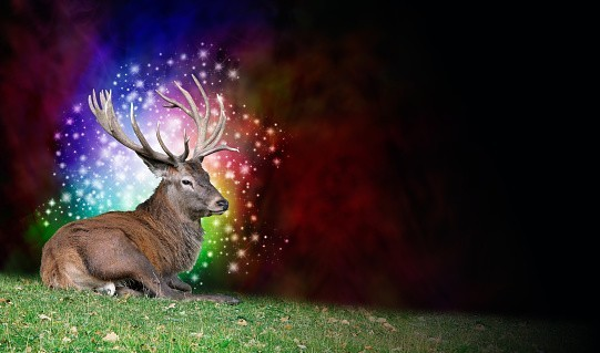 Monthly 30 Day Evolution Service - Work with Spirit Guides