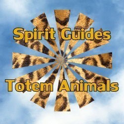TOTEM ANIMALS & SPIRIT GUIDES :: BINDING OF 9 GUIDES