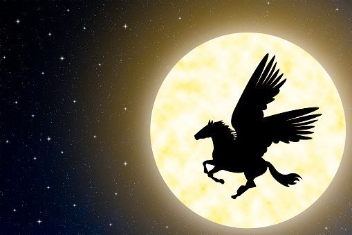 Pegasus :: The Immortal Creature Of Beauty, Magick & More :: Chyvel (C5, Tier 3)