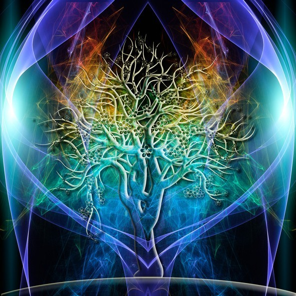 Spell Of Aura Tree for Strength, Growth & Power For Your Aura