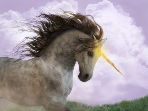 Light Of The Unicorn Spell Of Supernatural Gifts