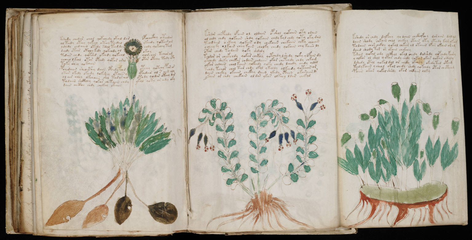 Puzzle Key Spell for Voynich Manuscript