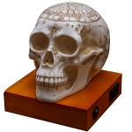 Astrology Skull Lamp