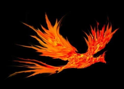 Phoenix Spirit Named Hari - Eternal Bird Of Power
