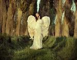 The Carive Living Entity - Angelic Beings Of Ethereal Power