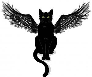 Channel to the Diano Winged Cat Spirits - Spiritual Messengers of the Gods