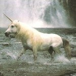 UNICORN :: A CREATURE OF MANY POWERS :: MIRAN (C5, TIER 3)