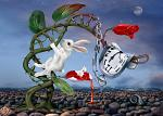 Chase The White Rabbit - Spell for Fate & Destiny