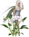 Amadan Fairy Spirit Named Rizzy - Irish Magic of Good Luck & Prosperity