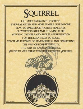 Squirrel Prayer