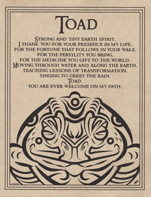 Toad Blessing