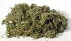 Five Finger Grass Cut 1oz