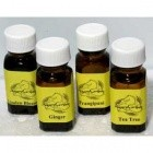 2dr Anise Essential